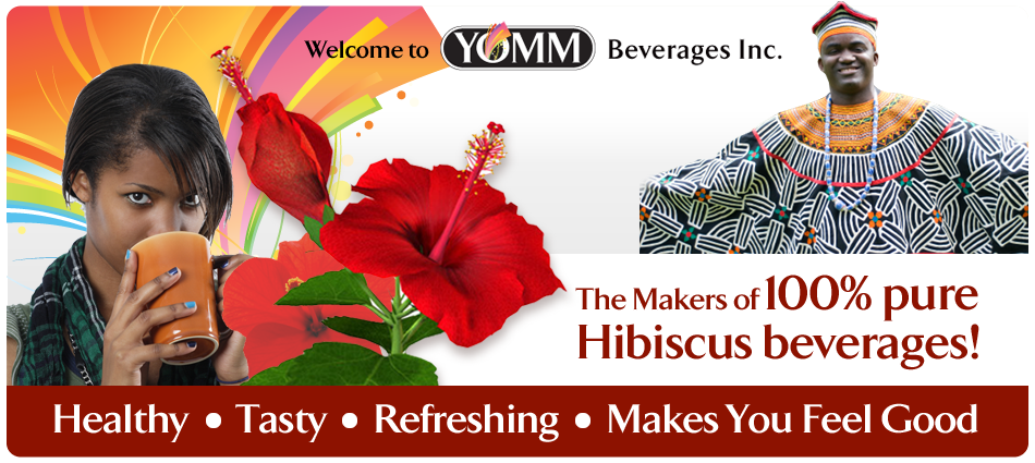 Hibiscus Tea Bags - YOM Beverages Inc. - Healthy Drinks - Winnipeg Manitoba